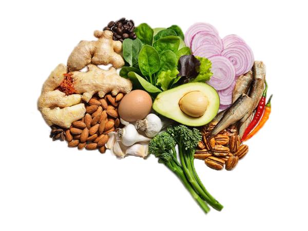 Brain-Food-Lauri-Lang-Pittsburgh-PA